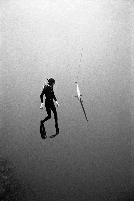 Kanoa Zimmerman.  Deep sea black and white.  Suspensions of disbelief.