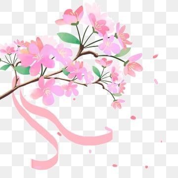 Pink Cherry Branches Decoration Cherry Blossom Clipart Decoration Pink Png Transparent Clipart Image And Psd File For Free Download Cherry Blossom Wallpaper Cherry Blossom Watercolor Blossoms Art