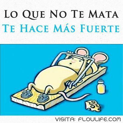 Refranes Populares Ilustrados Latinoamericanos Dichos Y Refranes Refranes Populares Frases Graciosas