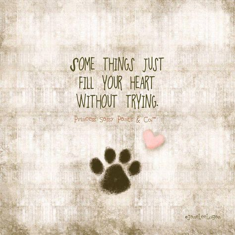 """""""Some things just fill your heart without trying."""""""