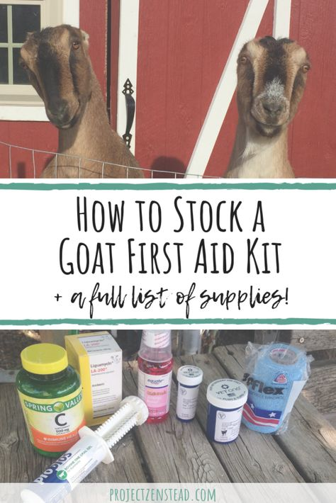 How to Stock a Goat First Aid Kit + Full List of Supplies! - Project Zenstead Stocking a goat first aid kit will help you be more prepared for an emergency, illness or injury. Here's what we keep in our goat first aid kit! Feeding Goats, Raising Goats, Goat Playground, Small Goat, Goat Shelter, Goat Barn, Boer Goats, Dwarf Goats, Mini Farm