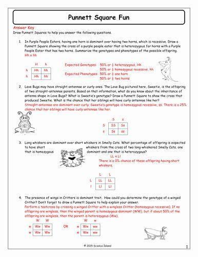 Punnett Square Worksheet 1 - worksheet