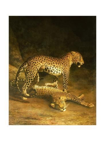 Two Leopards Lying In The Exeter Exchange 1808 Giclee Print By Jacques Laurent Agasse Painting Prints Leopards Poster Prints