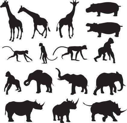 African Animal Silhouette Collection Africaine African Animal Collecti Scherenschnitt Tiere Scherenschnitt Vorlagen Tiere Tiere Malen