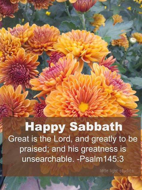 happysabbath #sabbath #rest #flowers #nature | In God we ...