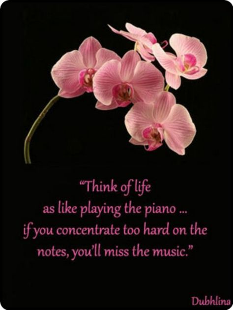 Image result for orchid love quotes