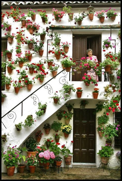 A vertical garden is a garden that grows upward (vertically) using a trellis or other support system, than on the ground (horizontally) #verticalgarden #gardenideas #diy_verticalgarden #gardendesign #verticalgarden_ideas #diygarden