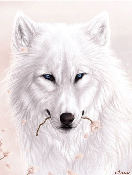 white wolf with flower