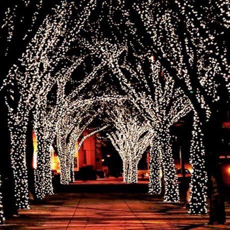 100 Led Solar Powered Fairy Lights 55 Ft Outdoor Christmas Christmas Lights Solar Fairy Lights