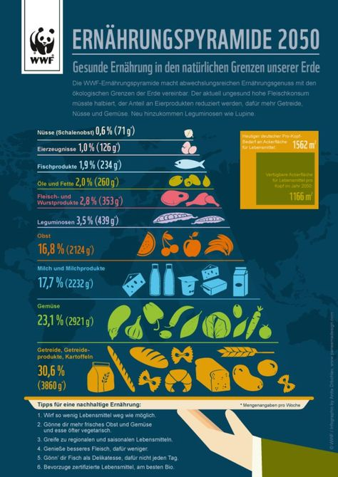 Healthy nutrition in the natural limits of our planet © WWF / Infografik / Anita Drbohlav