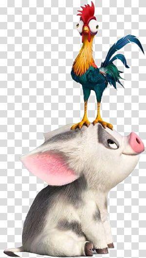 Hei Hei The Rooster The Walt Disney Company Drawing Academy Award For Best Animated Feature Film Baby Moana Transparen Moana Drawing Disney Moana Moana Poster