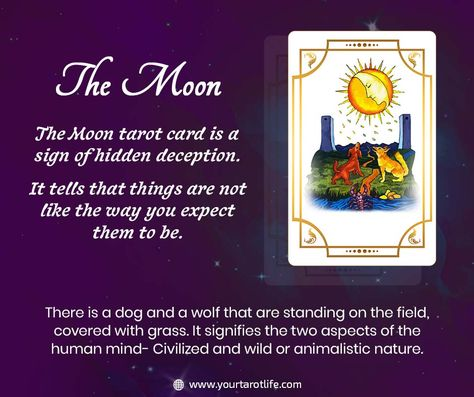 The Moon Tarot is the XVIII Major Arcana Card which signifies your intuitions! #tarot #tarotcards #tarotreading #tarotreader #tarotreadersofinstagram #witch #love #astrology #zodiacs #lovetarotreading #spiritual #magic #meditation #taurus #gemini #moontarot #leo #virgo #libra #moontarotcard #sagittarius #intution #aquarius #pisces #tarotspread #art #lovertarot #tarotlife #minorarcana #majorarcana