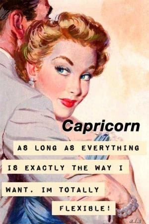 50 Best Capricorn Memes That Describe This Zodiac Sign