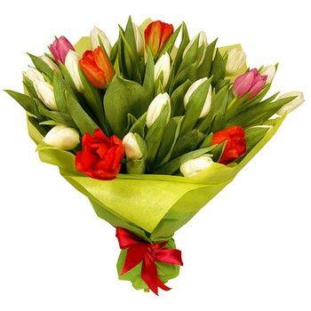 Bukiet 25 Kolorowych Tulipanow Przesylka Kwiatowa E Kwiaty Flower Delivery Tulips Fast Flowers