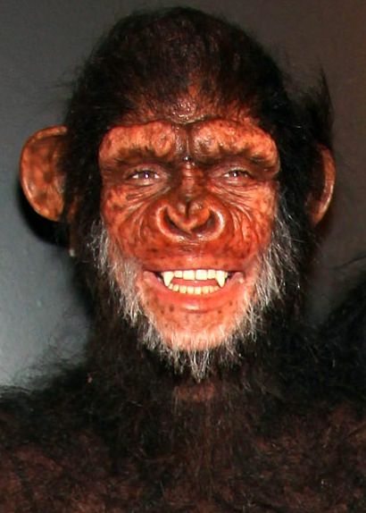 Heidi Klum Monkey Halloween Costume.Heidi Klum As A Monkey Halloween Looks Halloween Makeup Heidi Klum