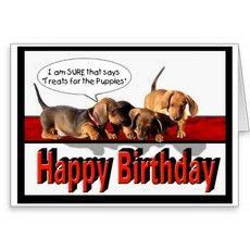 Birthday | Doxie ️ Paisley | Pinterest | Birthdays ... |Weiner Dog Birthday Memes