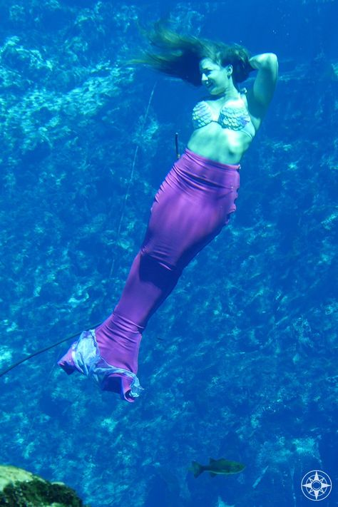 Meet a Magical Weeki Wachee Mermaid with Determination and ... |Meet Weeki Wachee Mermaids