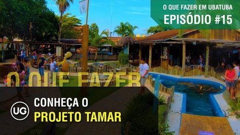 Projeto Tamar Em Ubatuba Ep 16 Final Do City Tour Sobre O Que