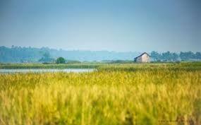 Image Result For Rural Landscape Photography Landscape Rural Landscape Landscape Photography