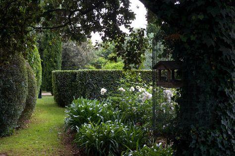 paolo pejrone / giardino di appia antica roma