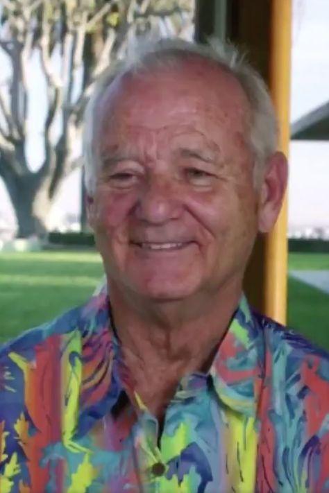 Bill Murray Wears Hawaiian Shirt in Golden Globes Appearance