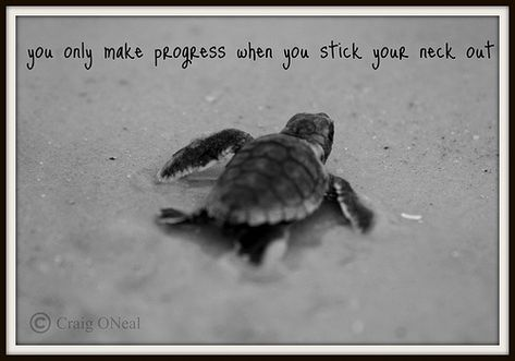 """- Finding your motivation in the little things -  """"You only make progress when you stick your neck out"""""""