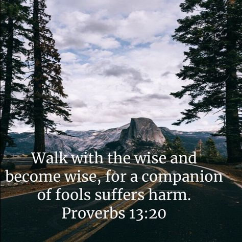 Proverbs Walk with the wise and become wise, for a companion of fools suffers harm. Healing Scriptures, Scripture Verses, Bible Scriptures, Biblical Quotes, Bible Verses Quotes, Faith Quotes, Proverbs 13, Soli Deo Gloria, Motivational