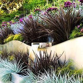 Making Waves Phormium Amazing Red Silver Puya Blue Fescue And Threadleaf Nandina 1000 Water Wise Landscaping Plants Contemporary Garden Design