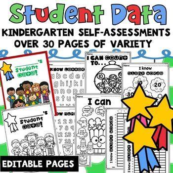 Student Data Tracking Sheets Binder Kindergarten In 2020 Student