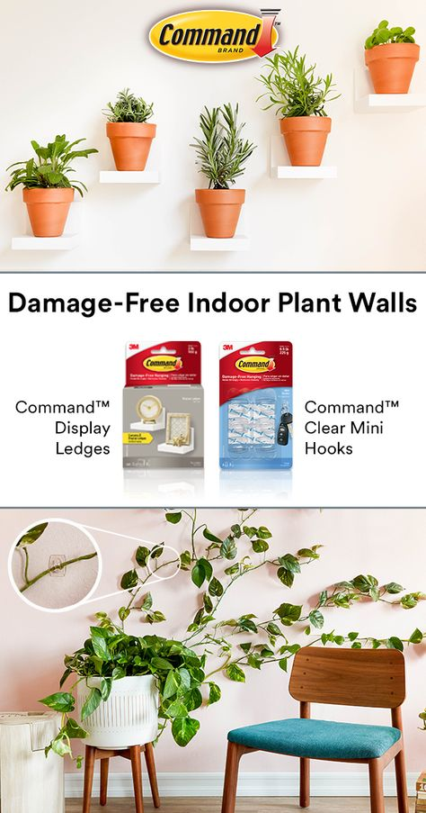 Create a plant wall damage-free with Command™ Brand. Display small plants on C. Create a plant wall damage-free with Command™ Brand. Display small plants on Command™ Display L Indoor Garden, Indoor Plants, Home And Garden, Indoor Outdoor, Plant Wall, Plant Decor, Plant Hooks, Industrial Interiors, Industrial Stairs