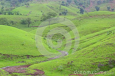 Greenery On Mountain Green Trees And Greenery On Earth Providing Natural Beauty To The Scene Nature Photographs Nature Natural Scenery