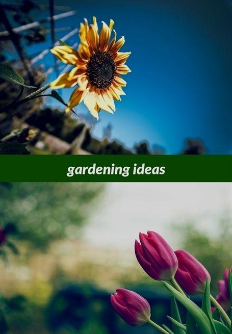 Gardening Ideas 13 20181201200904 53 Gardening Discount Codes