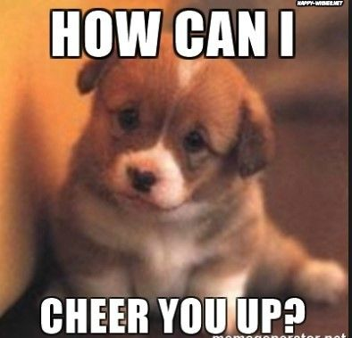 Want To Cheer Up Memes Love You Meme Cheer Up Pictures Puppies