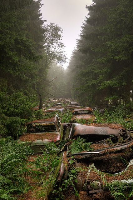 Traffic Jam in Belgium forest. The Chatillon Car Graveyard was a haunting sight with lines of abandoned cars sitting in an overgrown forest. The real story behind these abandoned cars remain a complete mystery. Abandoned Buildings, Abandoned Houses, Abandoned Places, Abandoned Belgium, Abandoned Vehicles, Haunted Places, Dame Nature, Beautiful Places, Scenery