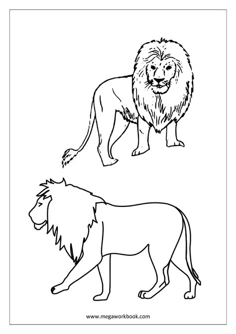 Animals Coloring Page For Kids Coloring Pages Kindergarten Pinterest