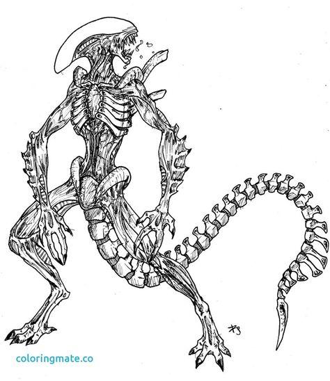 Alien Vs Predator Coloring Pages 9 For Alien Vs Predator Coloring