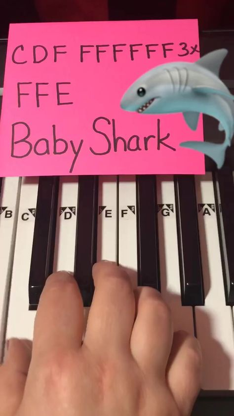 therubypiano( has created a short video on TikTok with music original sound. How to play Baby Shark on Piano 🎹❤️🦈 Piano Sheet Music Letters, Piano Music Easy, Piano Music Notes, Play Baby Shark, Baby Shark Music, Piano Lessons, Music Lessons, Partition Piano, Kalimba