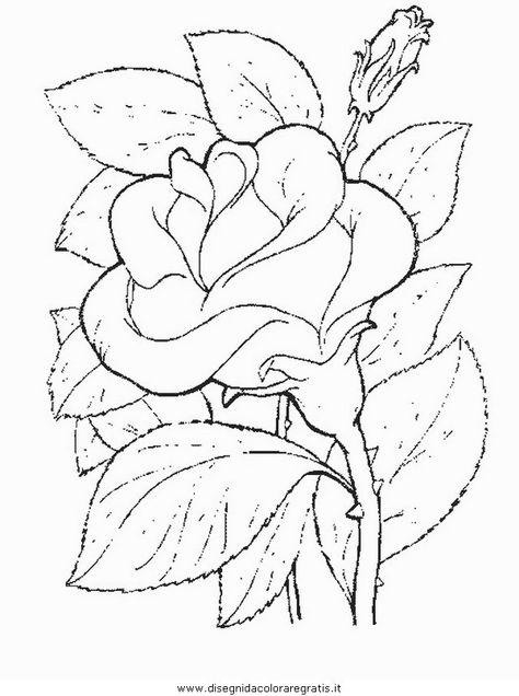 Ancora Rose Disegni Da Colorare Disegno Fiori E Disegni