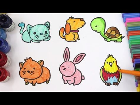 ccfac3b3a9fb Coloring Pages Animals Pets for Children Learn Colours, cat, dog, tortoise,  rabbit, parrot,guineapig - YouTube