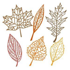 Leaf Pack Svg Cuttable Designs Leaf Stencil Leaf Template Leaf Cutout