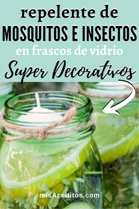 Repelente De Mosquitos Natural Y Otros Insectos En Frascos De Vidrios Repelente De Mosquitos Casero Repelente Natural De Mosquitos Repelente De Mosquito