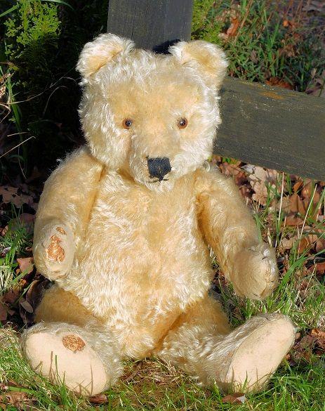 1950s old teddy bears Vintage Teddy