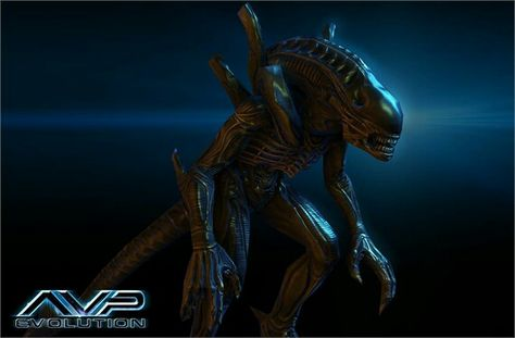 Pin by Kathleen Littell on Marcio L. Castro   Alien vs