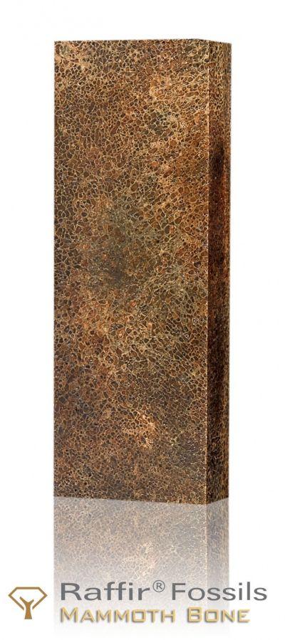 Raffir Fossils - Stabilized Mammoth Bone - porous | Raffir