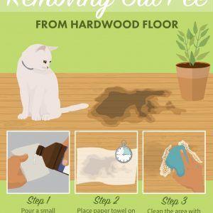 Old Cat Urine Hardwood Floors Catsprayingodorremoval Cat Urine Cat Stain Pet Urine Smell