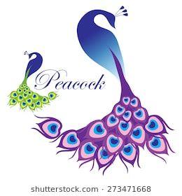 Peacock Flowers Women/'s Tee Image by Shutterstock