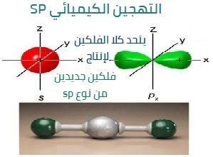 التهجين الكيميائي من نوع Sp Push Pin
