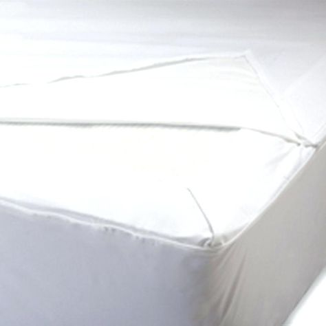 Nice Bed Bugs In Box Spring Ideas Ideas Bed Bugs In Box Spring For