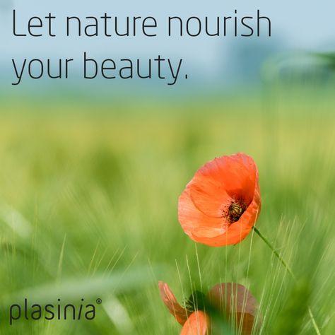Photo of Natural Cosmetics   Plasinia   Croatia