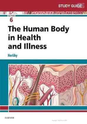 Study Guide For The Human Body In Health And Illness 6th Edition Shopnow Www Meripustak Com Study Guide Basic Anatomy And Physiology How To Memorize Things
